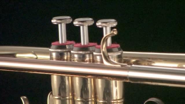 Trompete Spielzeug spielende Trompete wie neu Musik & Instrumente